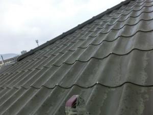 屋根U字瓦塗装施工事例